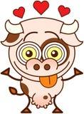 Vache mignonne se sentant follement dans l'amour Photo libre de droits