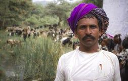 vacher Photos libres de droits