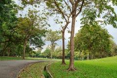 Vachirabenjatas park (rot fai park) bangkok thailand Stock Photo