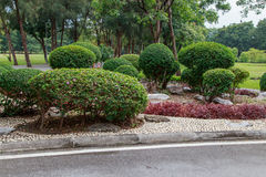 Vachirabenjatas park (rot fai park) bangkok thailand Stock Image