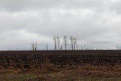 Vacie el campo arado Foto de archivo libre de regalías