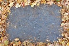 Vacie el espacio gris enmarcado por las hojas de otoño caidas Foto de archivo