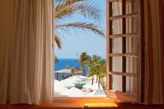 Vacie el fondo tropical del centro turístico, fuera de la opinión de la ventana con la palma t Fotos de archivo