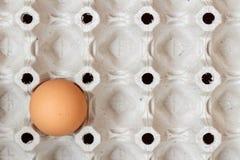 Vacie la bandeja del papel con un huevo marrón del pollo Visión desde la tapa Fotos de archivo