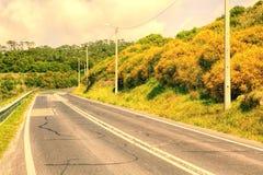 Vacie la carretera de dos calles de la carretera de asfalto que desaparece en perspectiva Foto de archivo libre de regalías