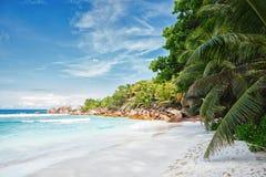Vacie la playa tropical con las palmeras del coco, La Digue, Seychelles imágenes de archivo libres de regalías