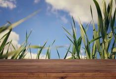 Vacie la tabla rústica delante de la opinión de ángulo bajo la hierba fresca Fotos de archivo
