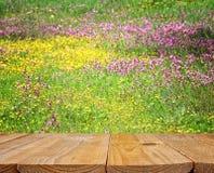 Vacie la tabla rústica delante de las flores hermosas del campo de la primavera Imagen de archivo libre de regalías