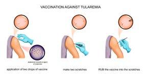 Vacinação contra o tularemia ilustração stock