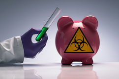 Vacina da gripe dos suínos fotos de stock