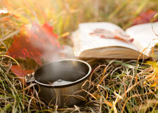Free Vacuum Flask Cup And Book Royalty Free Stock Image - 47926016
