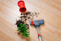 Vacuuming dirt from the floor. Home Royalty Free Stock Photography
