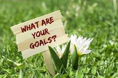 Vad är dina mål arkivbild