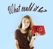 Vad är i denna gåva? arkivbild