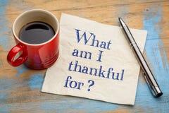 Vad är jag tacksam för? fotografering för bildbyråer