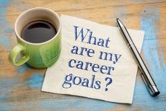 Vad är mina karriärmål? Royaltyfri Fotografi