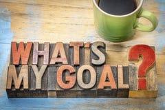 Vad är mitt mål? Arkivbild
