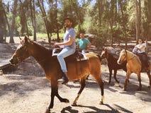 VAD SHEMESH, ISRAEL-MARCH 31, 2018: Hästryggridning på naturen i Bet Shemesh, Israel arkivfoto