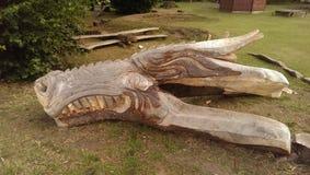 Vad som ska göras med en gammal trädstubbe Fotografering för Bildbyråer