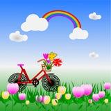 Vada in bicicletta in giardino floreale variopinto con un arcobaleno nel cielo royalty illustrazione gratis