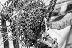 Vada in bicicletta il dettaglio, la ruota posteriore con la catena ed il dente per catena dell'ingranaggio B sudicia Fotografie Stock