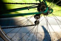 Vada in bicicletta la catena sulla vecchia bici italiana verde scuro della donna con luce gr fotografia stock