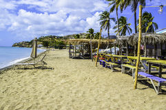 Vada in giro alla spiaggia Immagini Stock