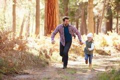 Vader And Daughter Running door Dalingsbos royalty-vrije stock fotografie