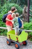 Vader die dochter en zoonsapen in de dierentuin verklaren stock fotografie