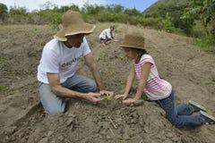 Vader en daugther het planten Royalty-vrije Stock Foto's