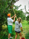 Vader en dochteroogstappelen in een boomgaard royalty-vrije stock foto's