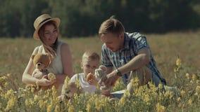 Vader en moeder het spelen met hun zoon in groene de zomerweide stock videobeelden