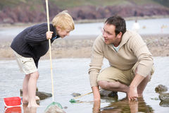 Vader en zoon bij strand visserij stock foto