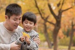 Vader en zoon die blad in het park in de herfst bekijken Stock Fotografie
