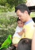 Vader en zoons de Vogelpark van Jurong in Singapore Royalty-vrije Stock Afbeelding