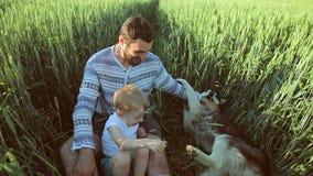 Vader en zoons het spelen met een hond op het tarwegebied Het concept van de vaderdagfamilie stock footage