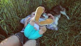 Vader en zoons het spelen met een hond op het tarwegebied Het concept van de vaderdagfamilie stock videobeelden