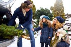 Vader gebrachte Kerstmisboom in grote boomstam van SUV-auto De dochter, de moeder en de hond ontmoeten papa helpen hem gelukkig m stock foto's