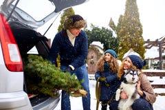 Vader gebrachte Kerstmisboom in grote boomstam van SUV-auto De dochter, de moeder en de hond ontmoeten papa helpen hem gelukkig m stock fotografie