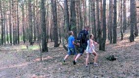 Vader met zoon en dochter die in bos lopen stock footage