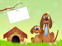 Vaderhond stock illustratie