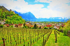 Vaduz Liechtenstein. View of Vaduz Castle vineyards and the Castle on the hilltop.Photo taken on May 3rd,2017 Royalty Free Stock Photo