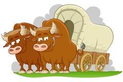 Vagão coberto tirado touros ilustração royalty free