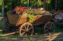 Vagão com flores Fotografia de Stock