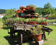 vagão de madeira decorado com muitos potenciômetros das flores Fotos de Stock