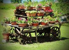 vagão de madeira velho com muitos potenciômetros das flores Foto de Stock Royalty Free