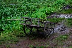 Vagão do carro deixado em Muddy Field Fotografia de Stock Royalty Free