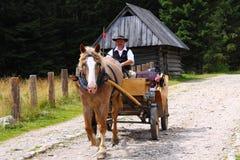 Vagão tradicional Foto de Stock