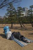 Vagabondi in un parco nel distretto di Nijubashimae di Tokyo, Fotografie Stock Libere da Diritti