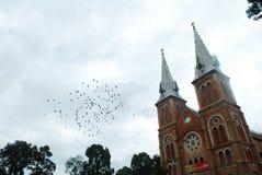 Vagabundos Notre Dame de Nha Tho Dat Fotografia de Stock Royalty Free